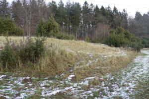 Gemeinschaft für Naturschutz im Bürener Land e. V.